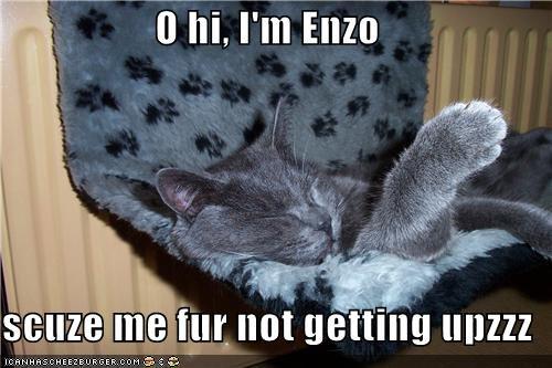 O hi, I'm Enzo  scuze me fur not getting upzzz
