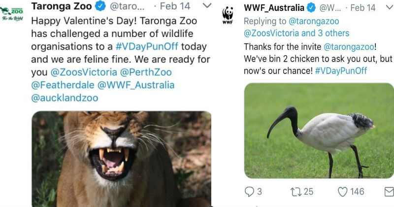 Australia and New Zealand had a showdown of puns on Twitter for Valentine's Day and the results are hilarious.