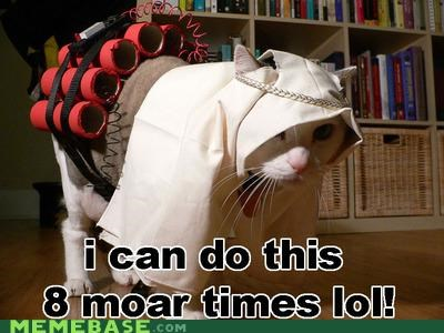 allah lolcats Memes terrorism - 4820501760