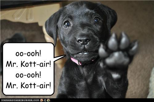 oo-ooh! Mr. Kott-air! oo-ooh! Mr. Kott-air!