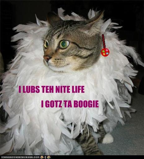 I LUBS TEH NITE LIFE I GOTZ TA BOOGIE --------- n * * * *