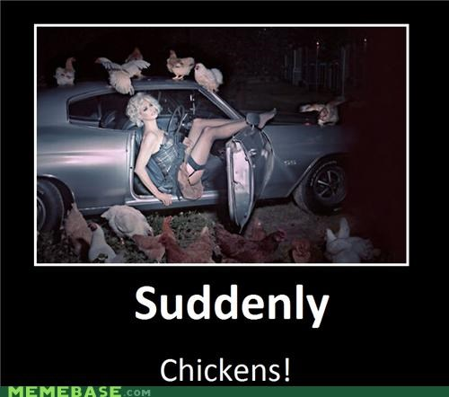 car,chickens,hilarious,Sexy Ladies,wtf