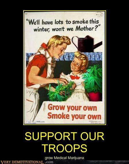 hilarious marijuana medical smoke troops wtf - 4823441920