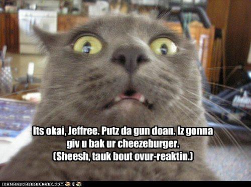 Cheezburger Image 4823705344