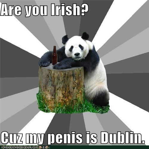 Are you Irish? Cuz my penis is Dublin.
