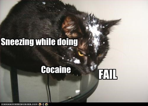 Sneezing while doing Cocaine FAIL