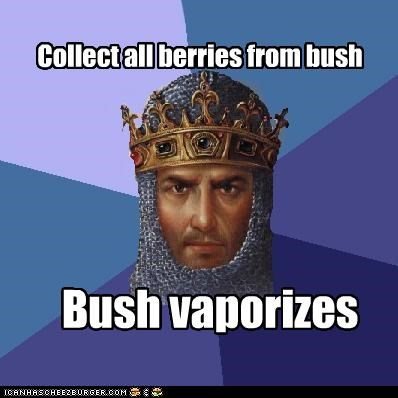 age of empires berries food Memes video games - 4824536064