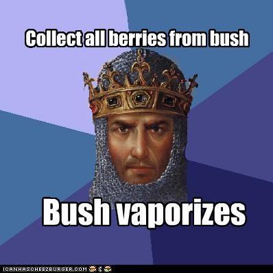 age of empires berries food Memes video games - 4824536064