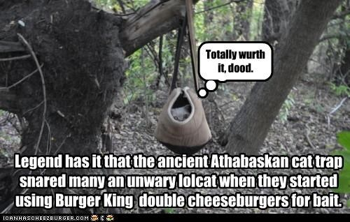 Cheezburger Image 4824856320