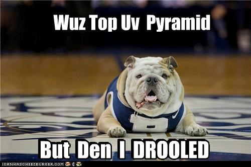 accident,bulldog,cheerleader,cheerleading,drooled,jersey,pyramid,sport,sports,top,was