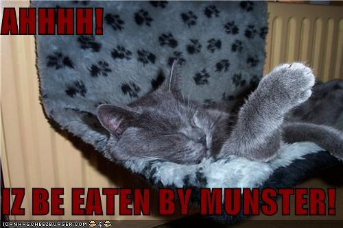 AHHHH!  IZ BE EATEN BY MUNSTER!