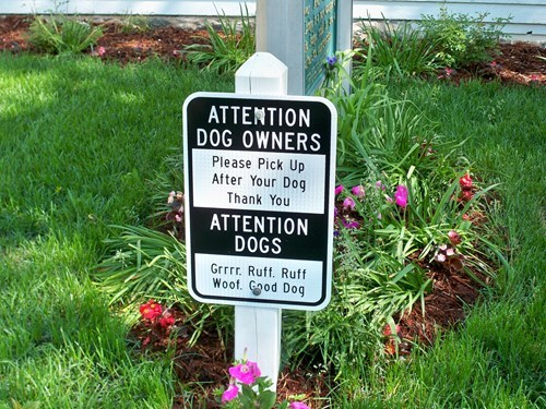 animals classic clever dogs pets poop signs - 4825058560
