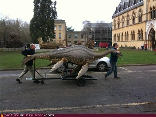 cart catch dinosaur wtf - 4825218048