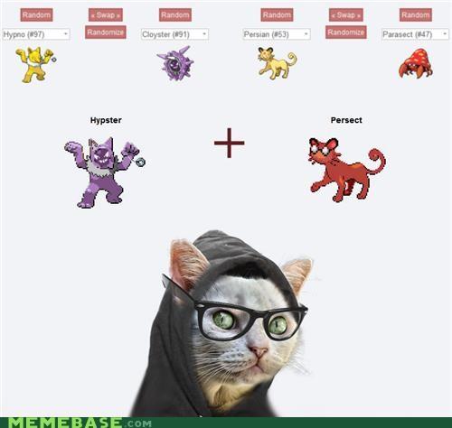 fusion Hipster Kitty hypster mainstream persect Pokémemes Pokémon - 4825408000