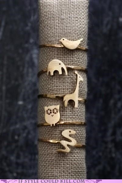 animals,cool accessories,ring of the day,rings