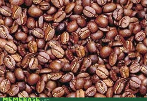 beans,bottom left,brick,coffee,face,Memes,when you see it