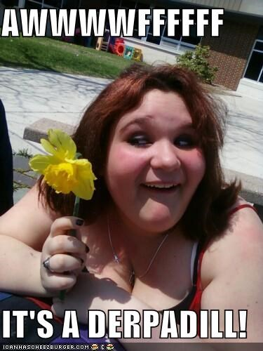 daffodil,Flower,Interweb,that face