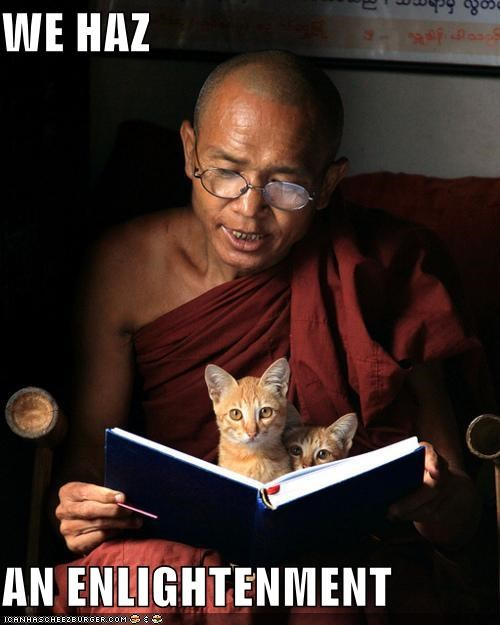 best of the week buddhism buddhist caption captioned cat Cats enlightenment Hall of Fame kitten monk we has zen - 4827322880