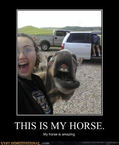amazing,horse,Pure Awesome,wtf