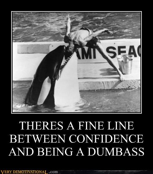 brave,confidence,hilarious,killer whale,stupid,true