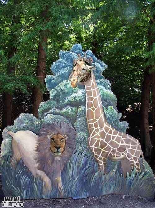animals cute giraffes lion zoo - 4828741632