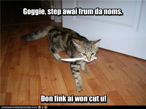 Goggie, step awai frum da noms. Goggie, step awai frum da noms. Don fink ai won cut u! Don fink ai won cut u!