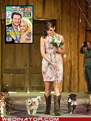 bridesmaids dogs funny wedding photos miranda lambert - 4830032128