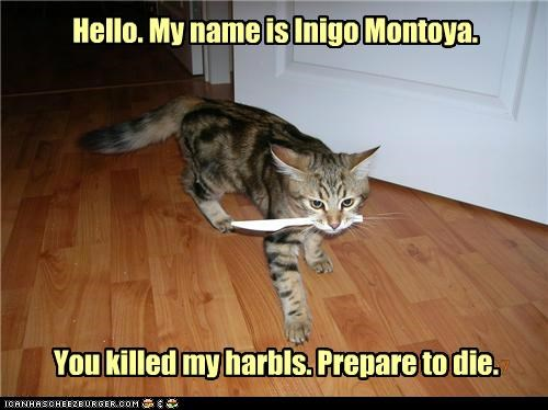 Hello. My name is Inigo Montoya. You killed my harbls. Prepare to die.