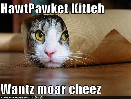 Cheezburger Image 4830255616