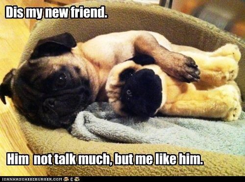 best of the week,but,cuddling,friend,friends,friendship,Hall of Fame,like,much,new,not,pug,sleeping,stuffed animal,talk