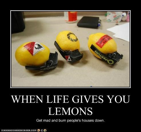 WHEN LIFE GIVES YOU LEMONS Get mad and burn people's houses down.