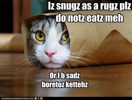 Cheezburger Image 4831385600