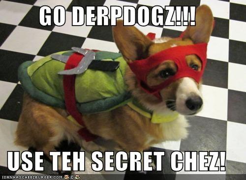 Cheezburger Image 4832196864