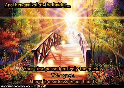 Your time passed entirely too quickly Mamagwyn. There is a sadness in our hearts Another arrival at the bridge...