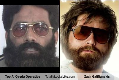 actors al qaeda terrorists The Hangover Zach Galifianakis