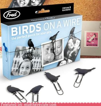 birds clips display hang photos string wire