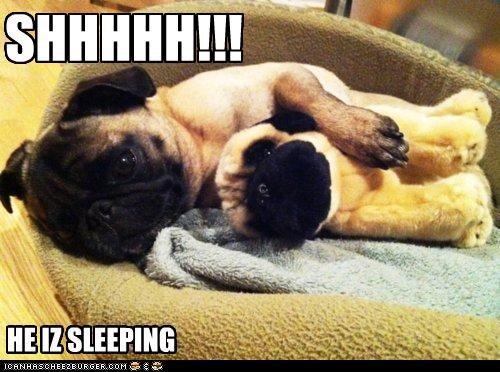 SHHHHH!!! HE IZ SLEEPING