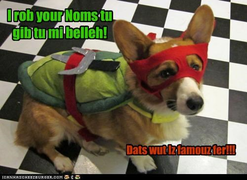 Cheezburger Image 4835239168