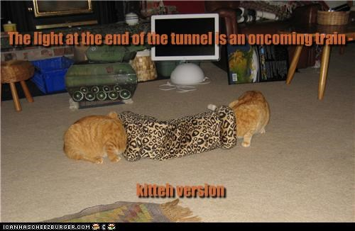 The light at the end of the tunnel is an oncoming train - kitteh version