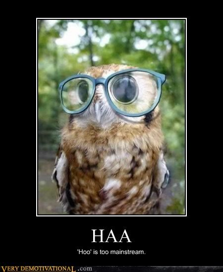 hilarious hipster hoo mainstream Owl - 4835702272