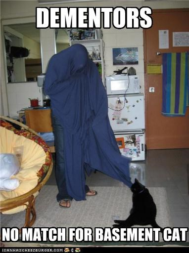 basement cat caption captioned cat dementors Harry Potter match no - 4836887552