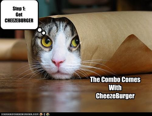 Cheezburger Image 4837219328
