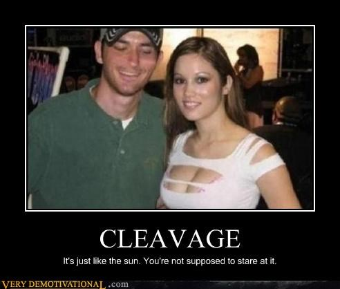 bad idea cleavage hilarious lady bags sun