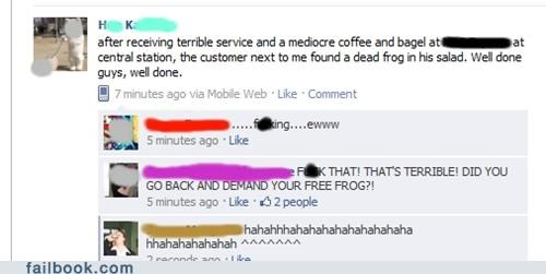 frogs I see what you did there restaurant - 4837579264