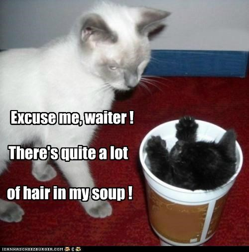 Excuse me, waiter ! There's quite a lot of hair in my soup !