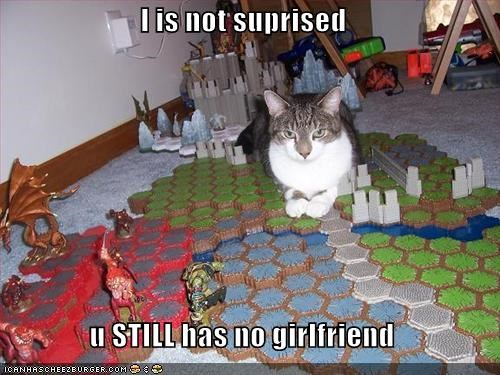 caption captioned cat girlfriend have I no not not surprised still surprised - 4838161152