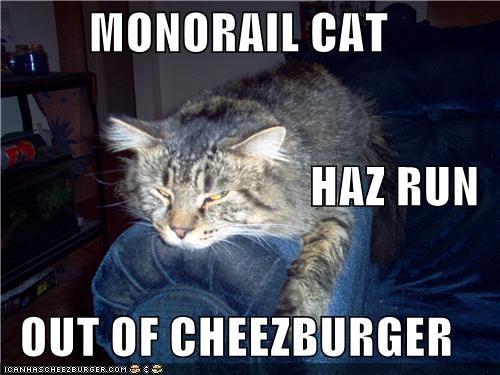 Cheezburger Image 4839542784