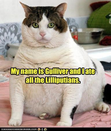 all at caption captioned cat fat gulliver gullivers-travels jonathan swift lilliputians name novel story - 4839706880