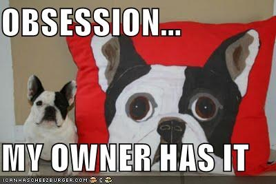 french bulldogs has i has likeness obsessed obsession owner Pillow - 4840033792