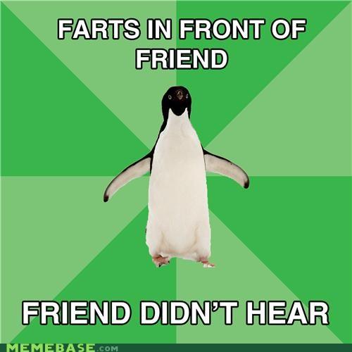 Awkward fart friends normal penguin socially awkward penguin - 4841066240